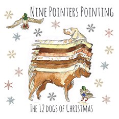 Nine Pointers Pointing