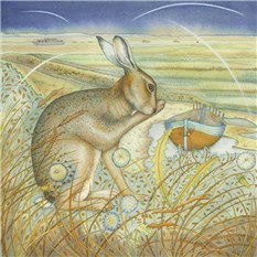 Hare on the Marshes