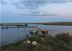 Moonrise over the Moorings