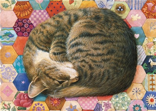 Gemma asleep on pink patchwork