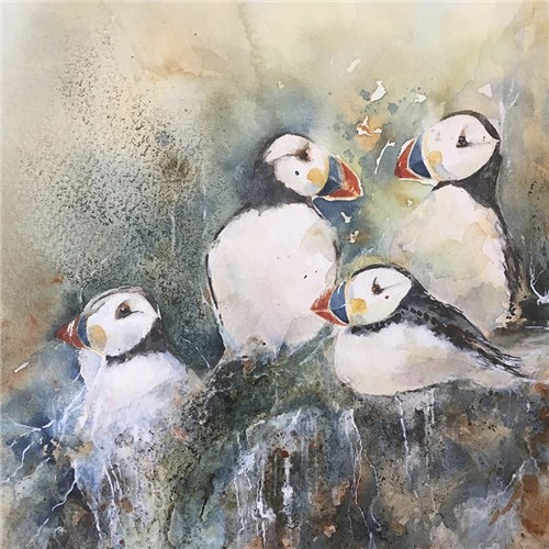 Puffins on a Ledge