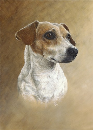 Jack Russell (Russell)