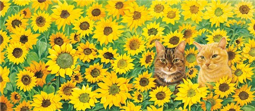 Blossom and Spiro in sunflowers